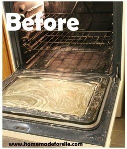 Natural and Effective Oven Cleaner