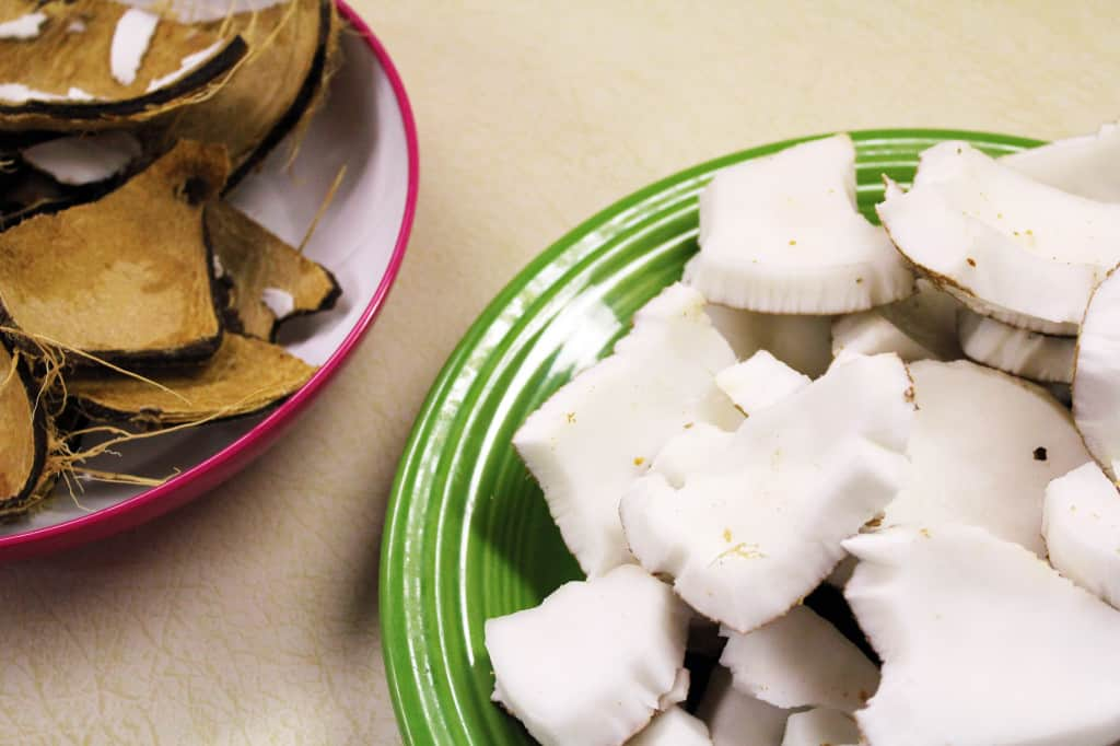 Coconut meat and shells