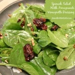 Pomegranate Vinaigrette Dressing