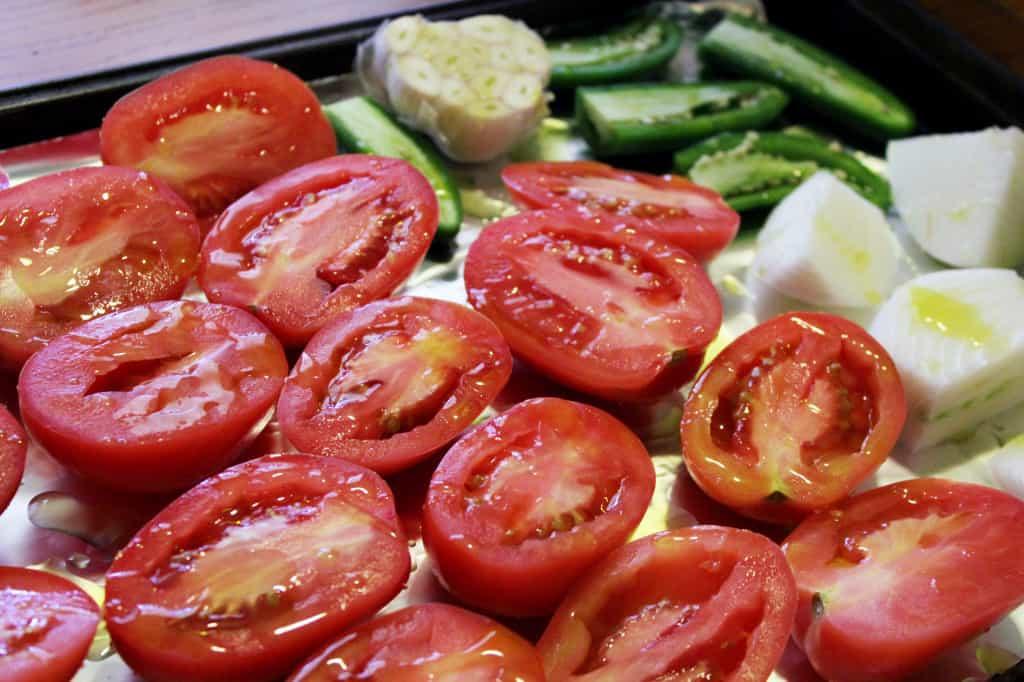 Roasted Salsa Veggies