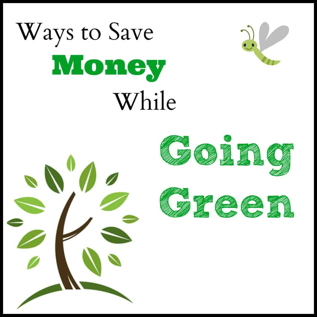 Ways to save money while going green