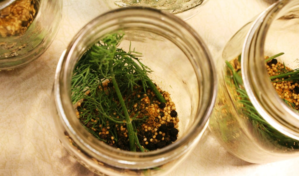 Spice and dill weed in a mason jar