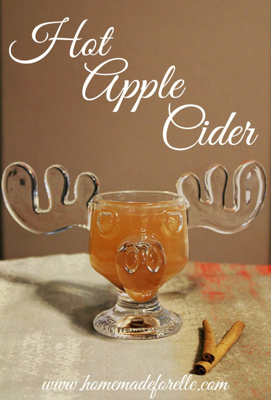 apple cider spiced apple cider recipe a beautiful mess spiced apple ...