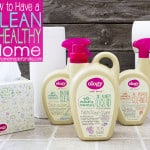 My Healthy Home – How I Clean Using Non-Toxic Cleaners