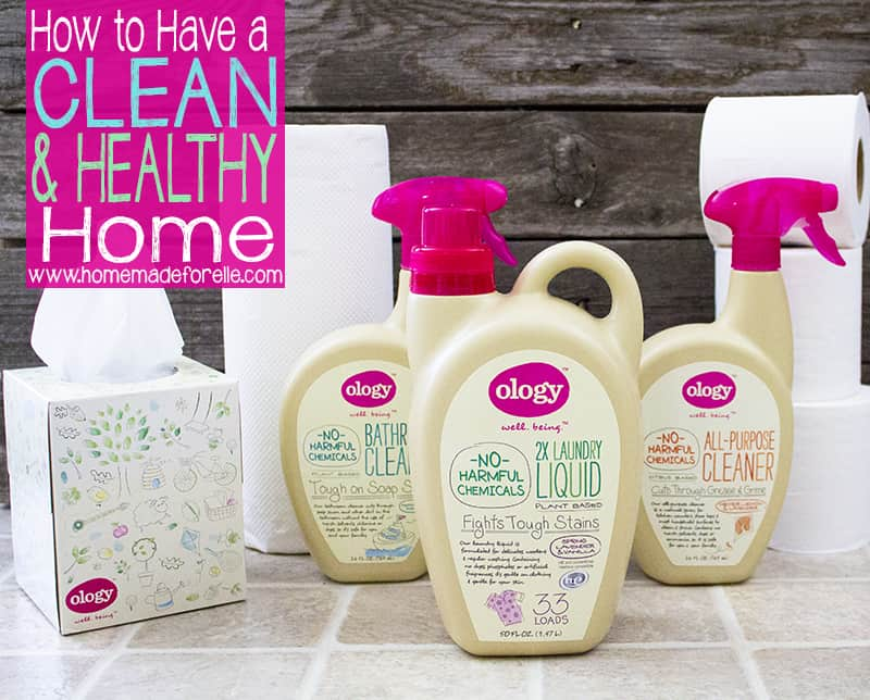 healthy home 2