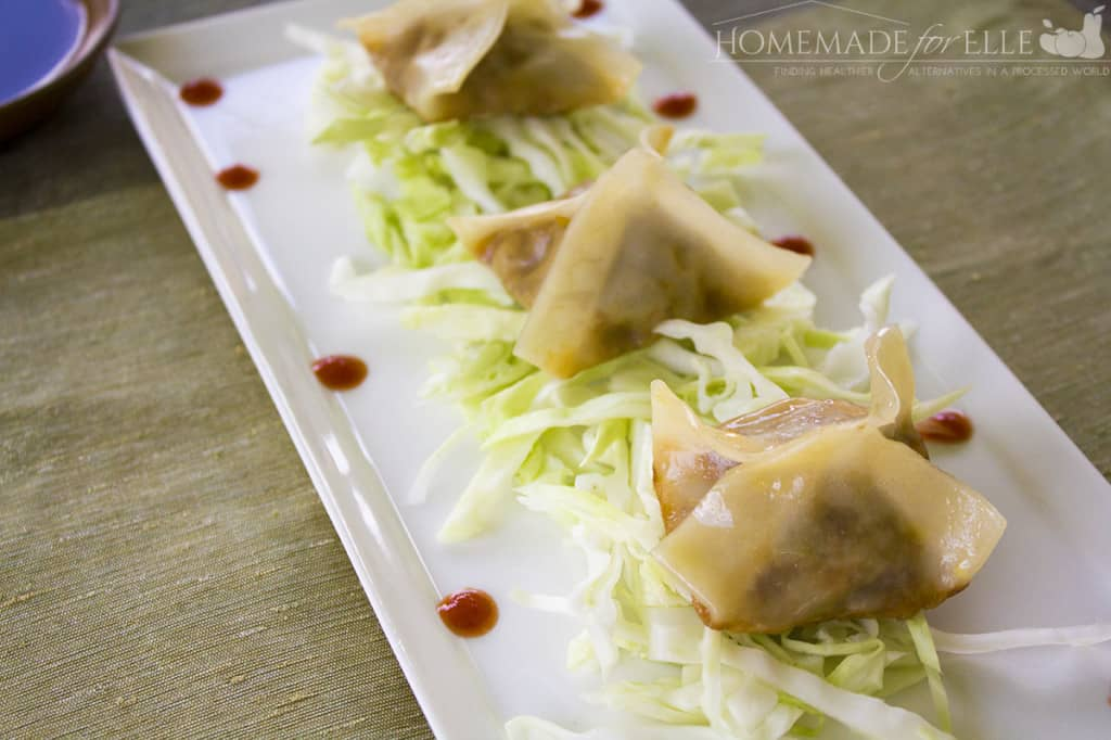Vegetarian Potstickers from Homemade for elle