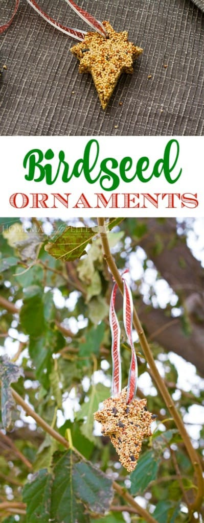 Homemade bird food ornament | homemadeforelle.com