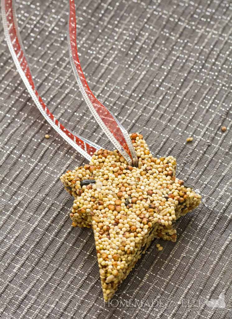 bird food ornament | homemadeforelle.com
