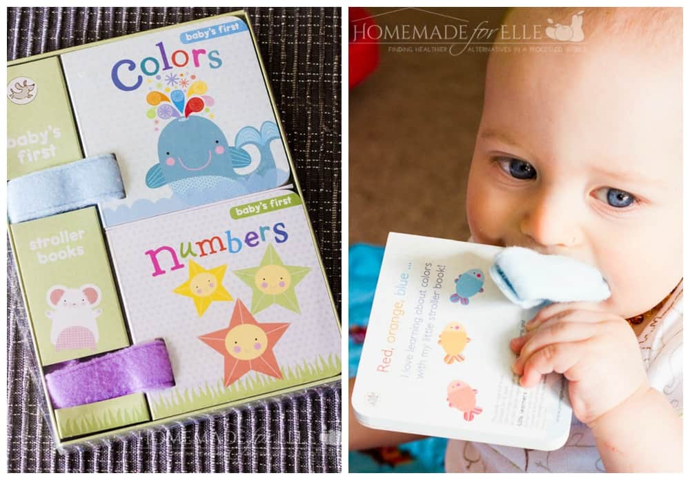 Monthly Baby Box - Baby's First Stroller Books | homemadeforelle.com