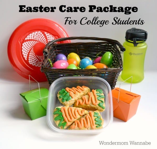 Baby easter basket ideas homemade for elle easter care package for college students negle Choice Image
