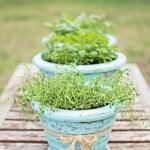 Refinishing-Old-Flower-Pots-015