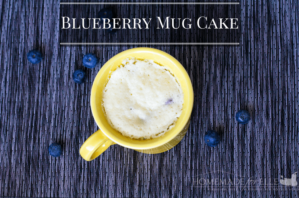 Clean Eating Blueberry Mug Cake | homemadeforelle.com