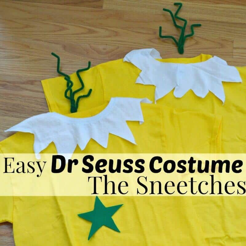 Dr Seuss Sneetches Costume | Organized31.com