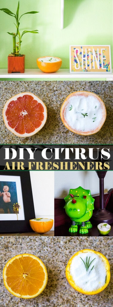 Citrus Rind Air Fresheners | homemadeforelle.com