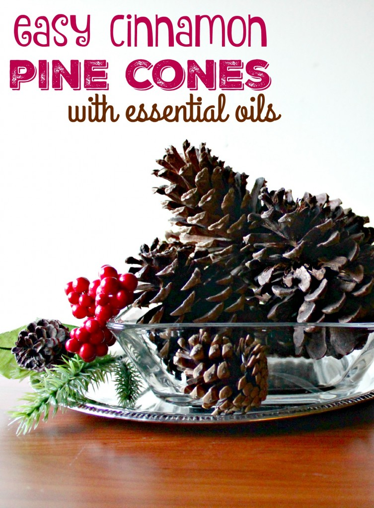 Easy Cinnamon Pinecones with Essential oils