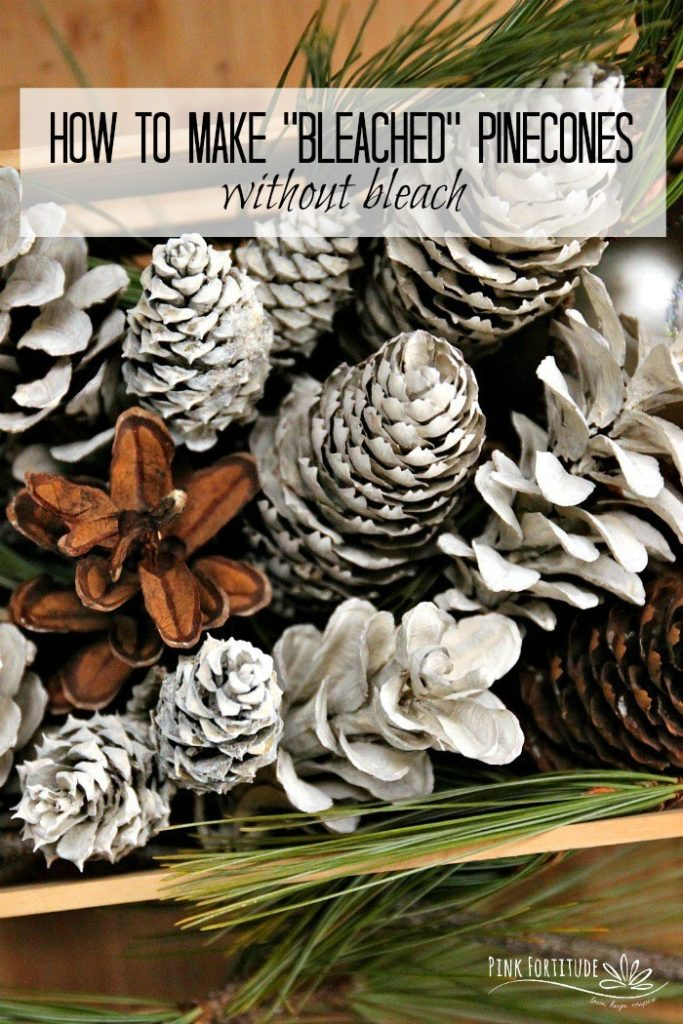 How to Make Bleached Pinecones without Bleach